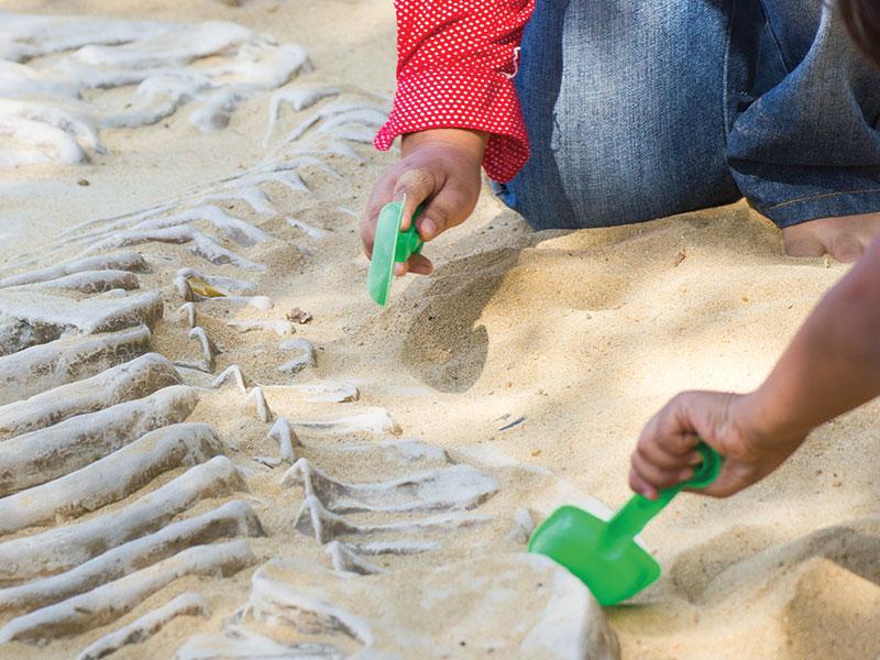 atelier-de-recherche-parc-aventure-la-foret-fossile-la-grand-combe-ales