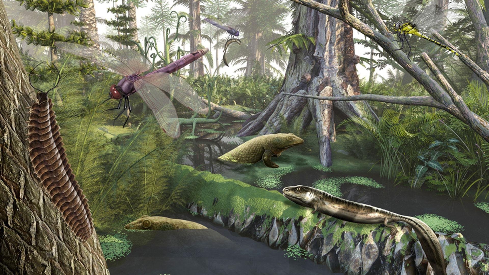 la-foret-fossile1-dinopedia-parc
