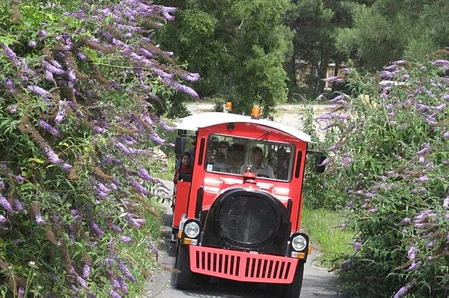 petit-train-rouge-la-foret-fossile-la-grand-combe-ales2