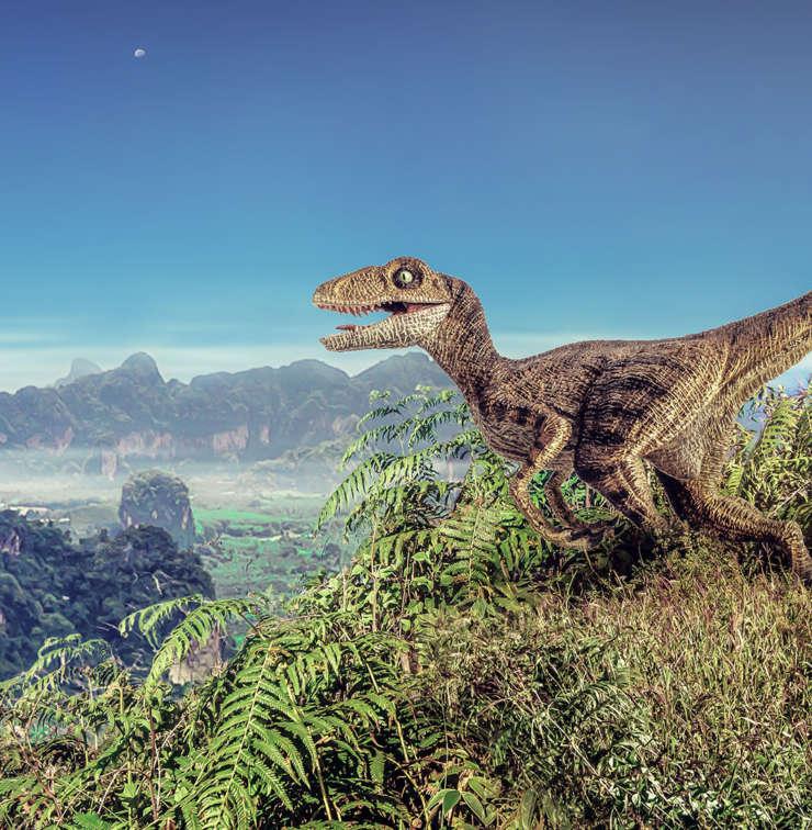 velociraptor-dinopedia-parc