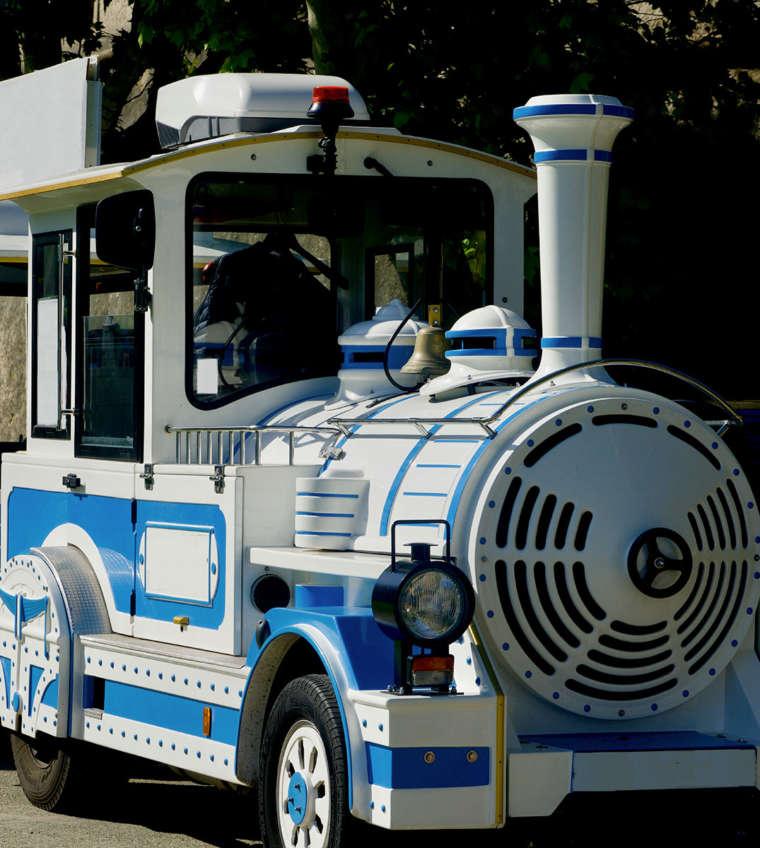 Chauffeur de Petit Train et Guide de la Forêt Fossile