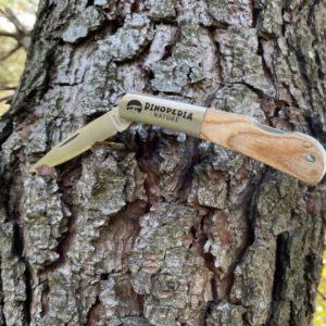 Couteau de poche Dinopedia Nature modèle Forêt