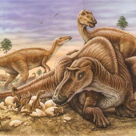 mauasaurus_carre