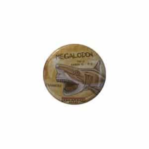 MAGNET MEGALODON